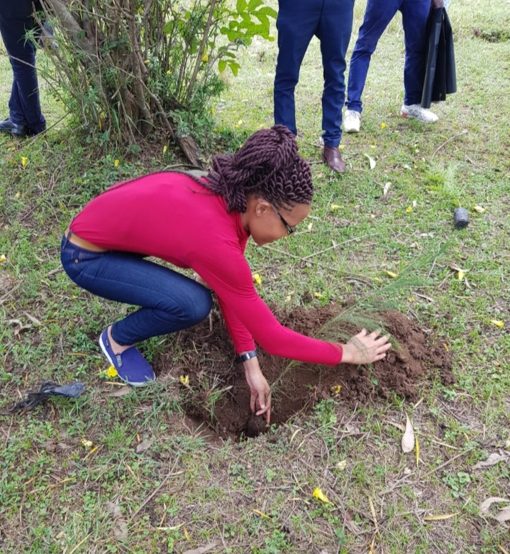 Planting trees to combat deforestation and conserve our biodiversity since trees are being destroyed at an alarming rate