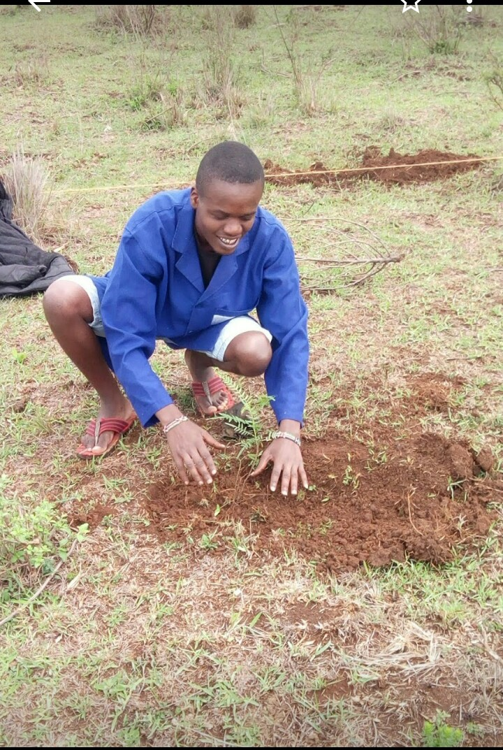 Participating actively in tree planting for clean and healthy environment around Moi. University and embracing World environment Day